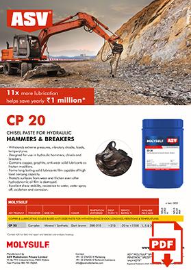 CP 20 flyer 2020