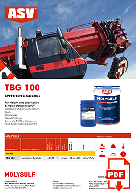 TBG 100 flyer 2020